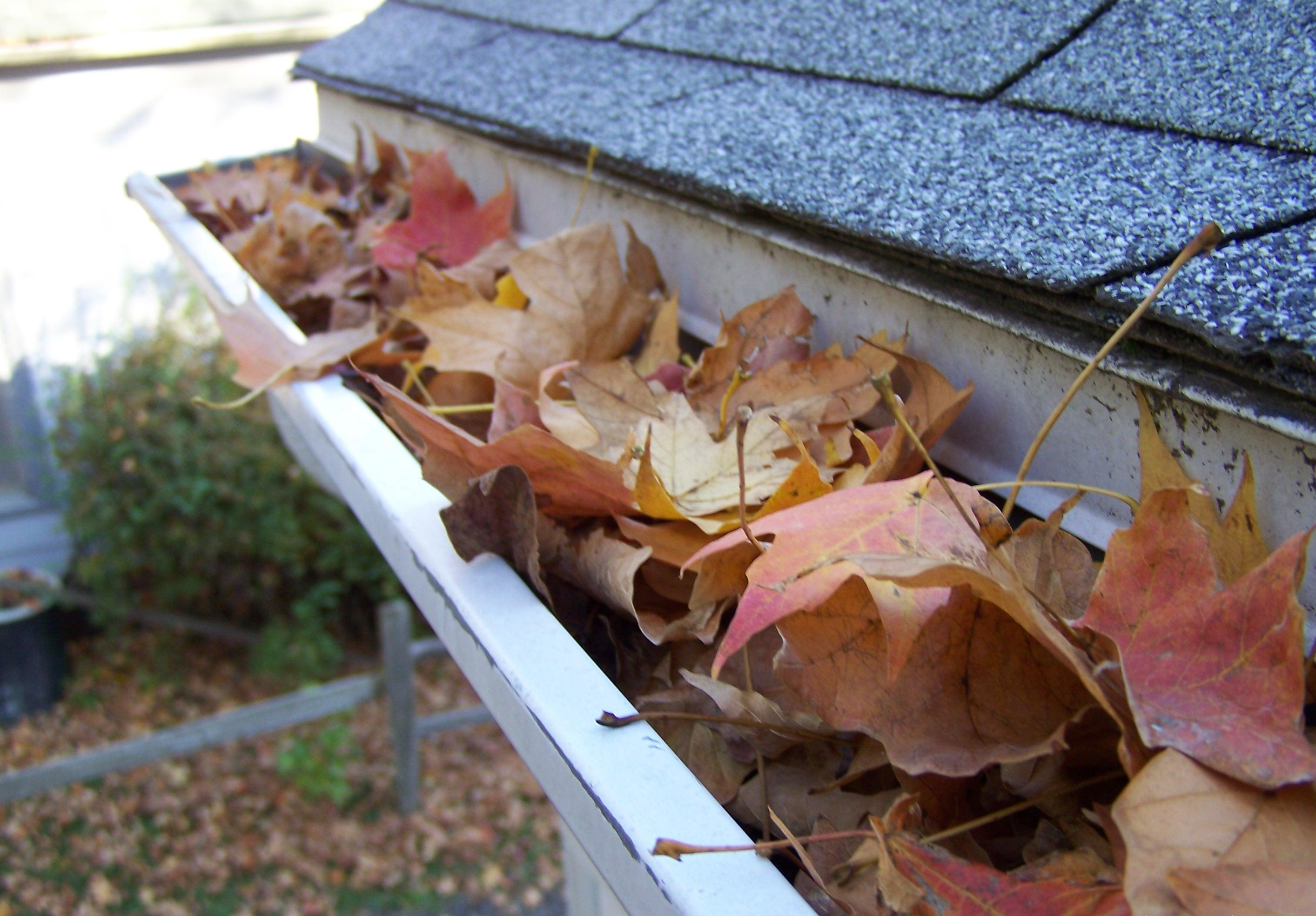 Original Gutter Cover protects your home from Leaves.
